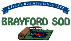Brayford Sod Farms Inc.